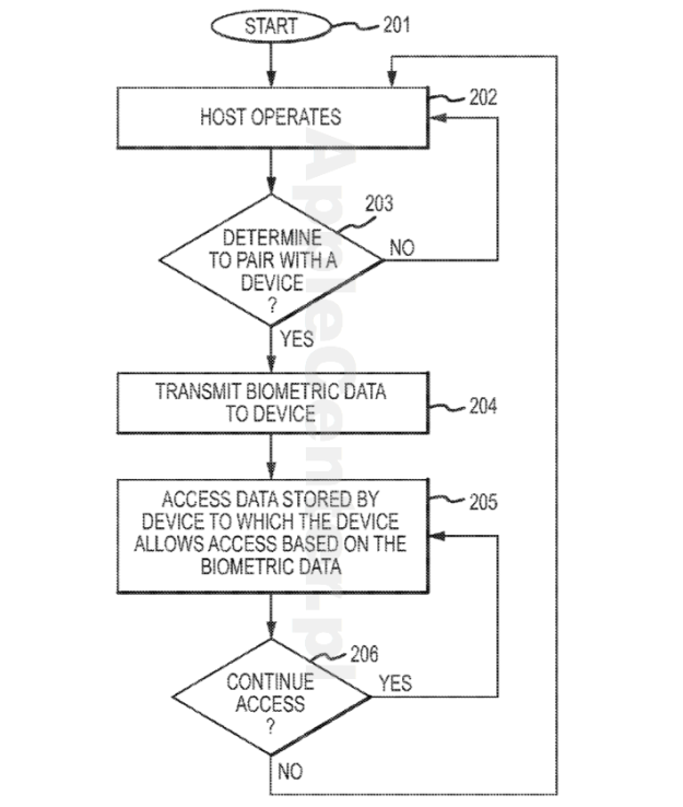 Patent Apple - dane biometryczne