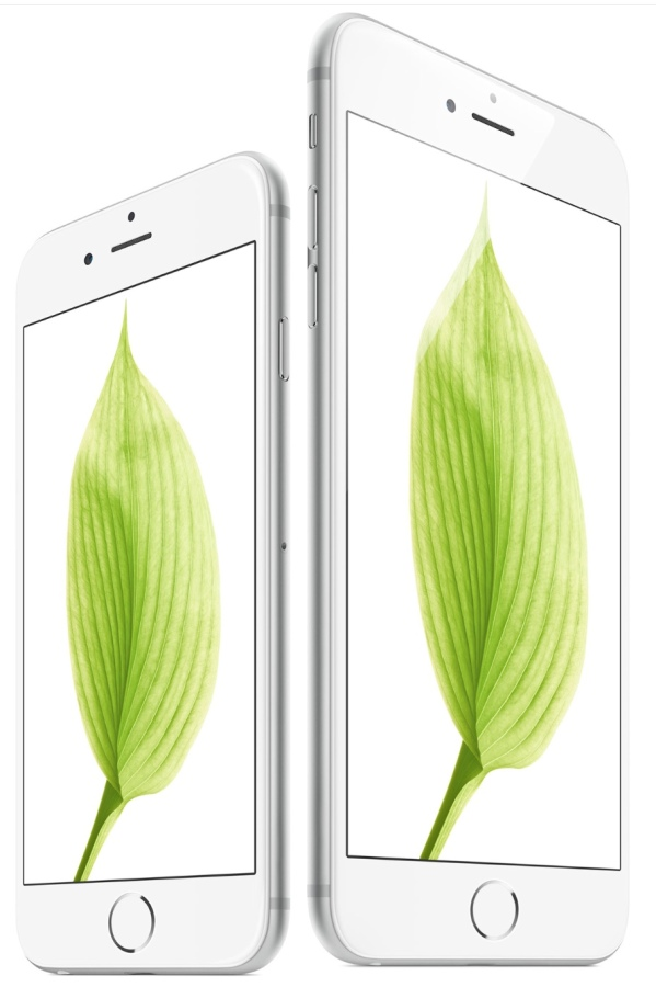 iPhone 6 and 6 Plus fron green