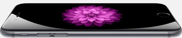 iPhone 6 spacegray flower front